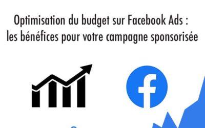 Optimisation du budget sur Facebook Ads : les bénéfices pour votre campagne sponsorisée
