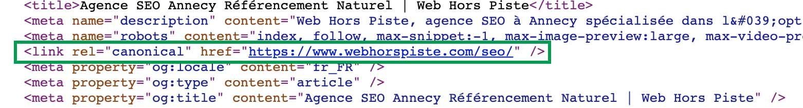canonical tag seo refonte site web